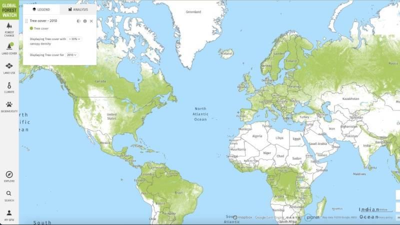 Anhand der Global Forest Watch Map erkennst du die Walddichte auf der ganzen Welt