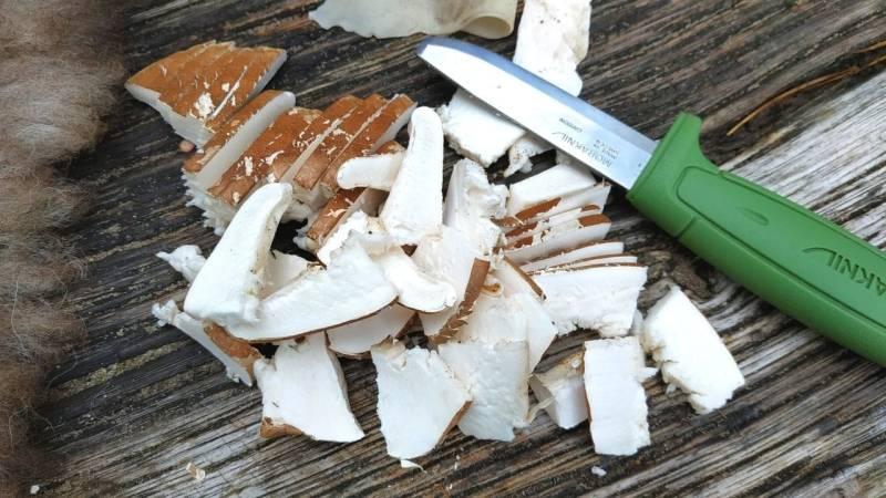 Zum Trocknen des Birkenporlings schneidest du den Pilz in Streifen