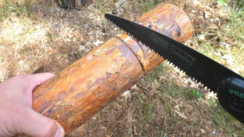 Säge eine ca. 2 cm tiefen Stopschnitt in den Holzklotz
