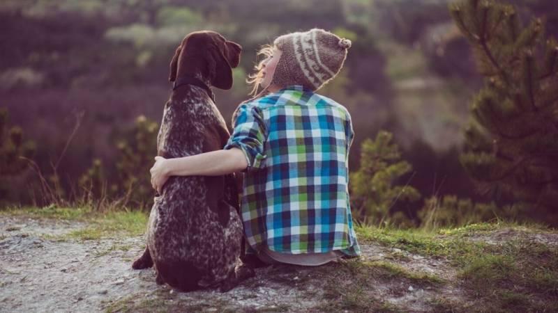 Bushcraft mit Hund: Ausrüstung, Leinenpflicht und Jäger