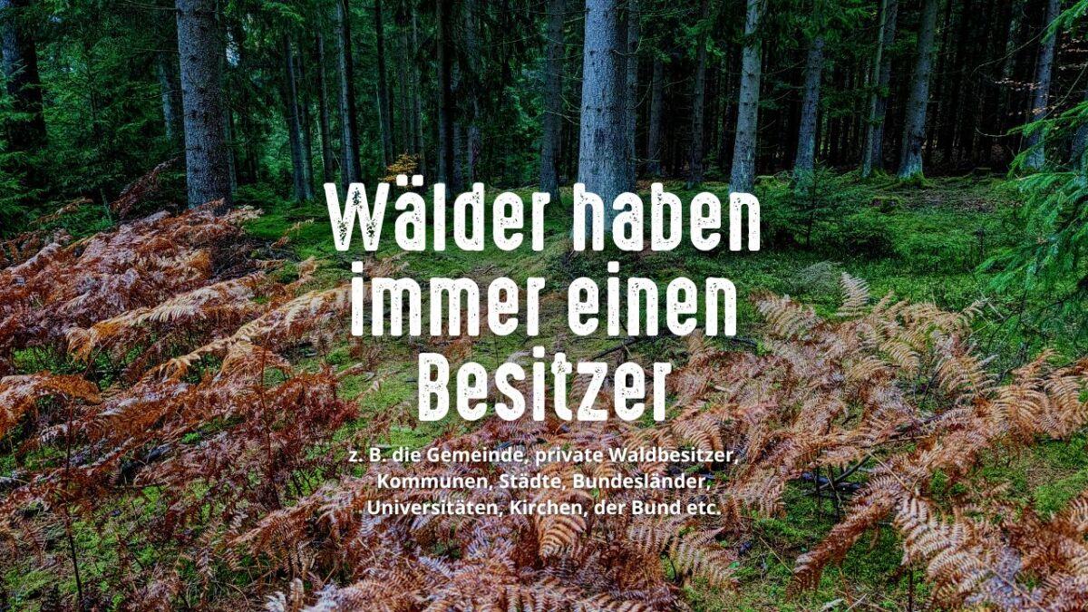Merke: Deutsche Wälder haben immer einen Besitzer!