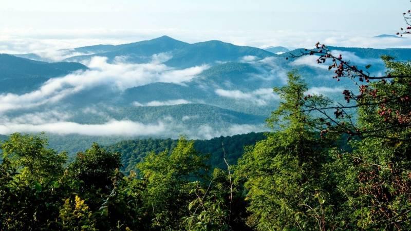 Die Appalachen liegen im Osten Nordamerikas und sind ein bewaldetes Gebirgssystem.