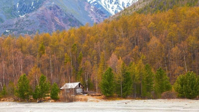 5 weltweit besten Orte, um in der Wildnis zu überleben