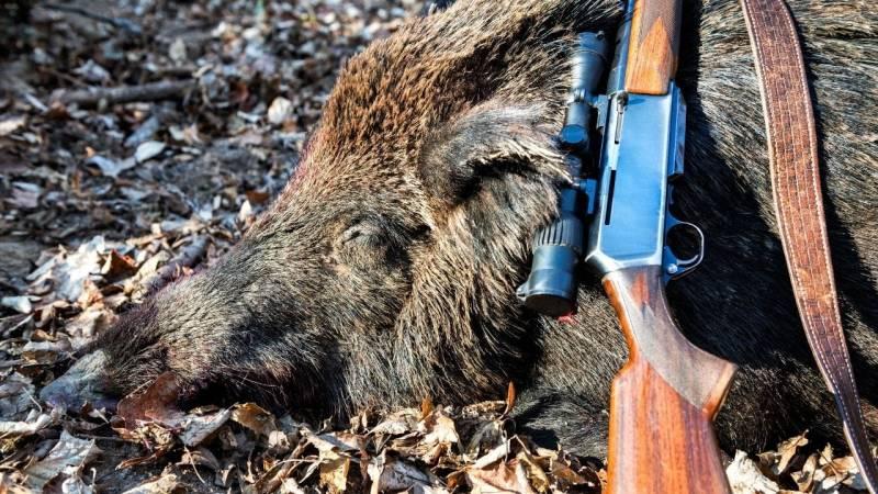 Tote Tiere darf sich nur derjenige aneignen, der das Jagdausübungsrecht besitzt