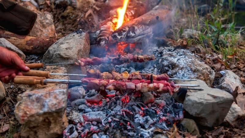 Fleisch von Wildtieren solltest du immer gut durcherhitzen