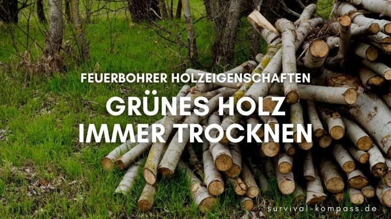 Wichtig: Grünes Holz muss getrocknet werden