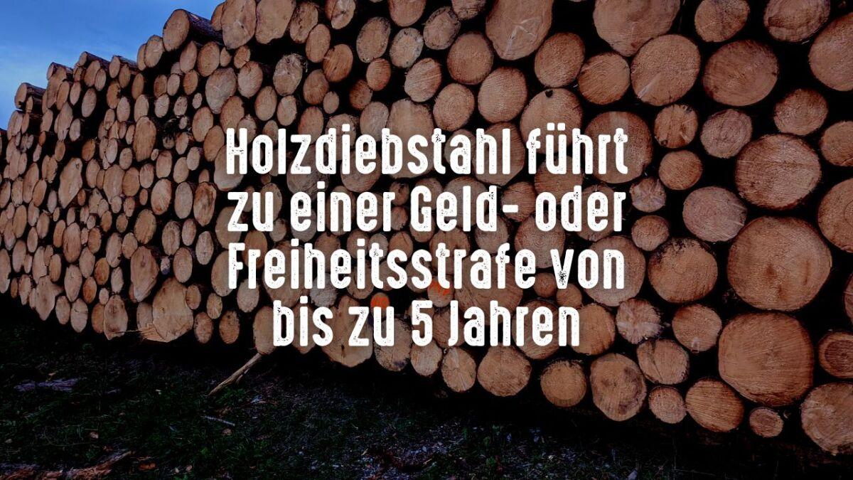 Holzdiebstahl ist ein riesiges Problem in Deutschland