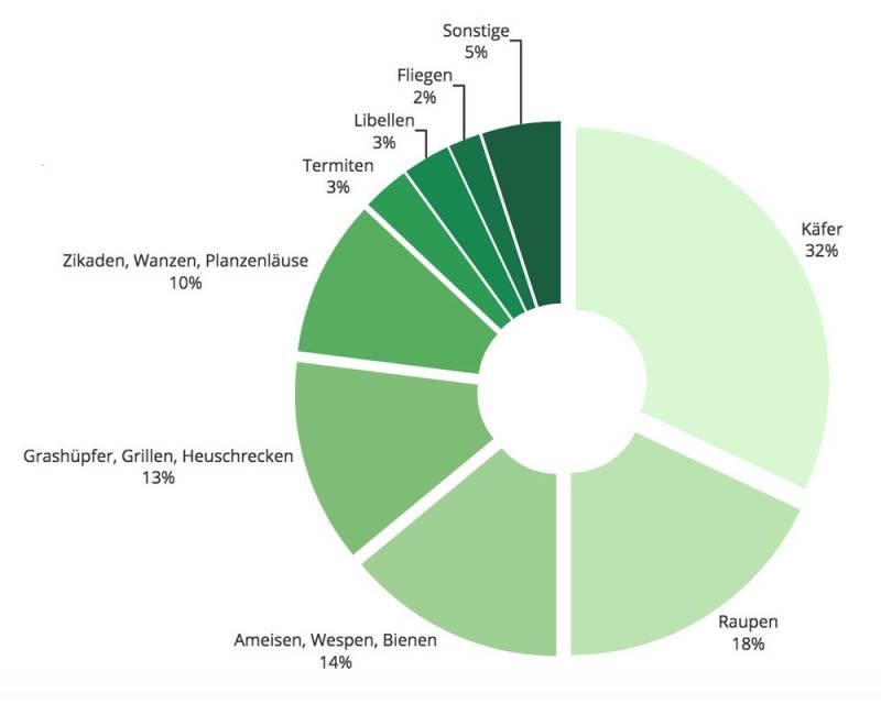 Insektenarten welche weltweit gegessen werden
