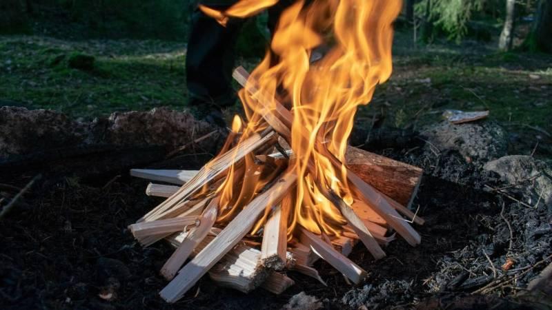 Ist Feuer im Wald erlaubt? Wie ist die rechtliche Lage?