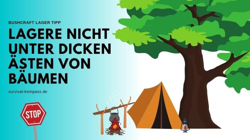 Lagere nicht direkt unter einem Baum
