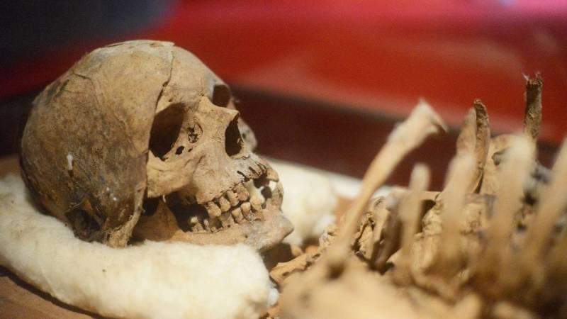 Selbst Ötzi wusste schon von der Heilwirkung des Birkenporlings
