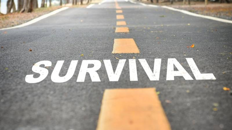 Der Plan, wie du drei Tage in der Wildnis überlebst