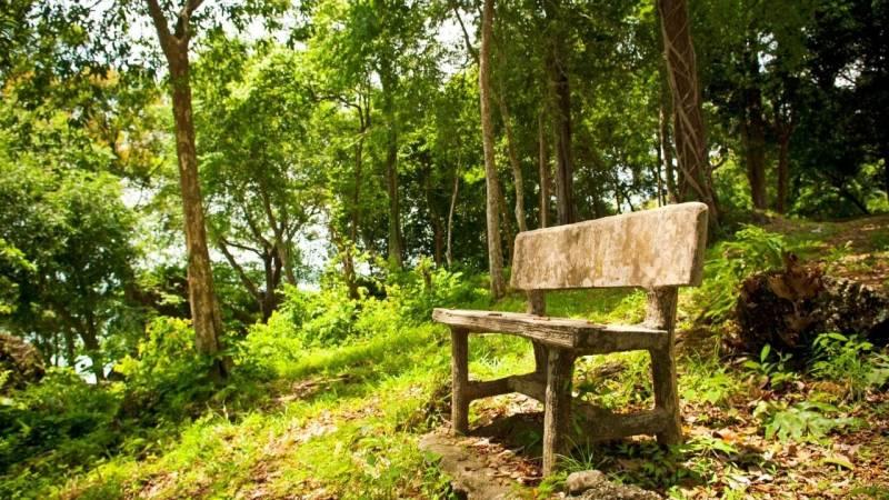 Der Sitzplatz: das Wunderwerkzeug der Wildnispädagogik
