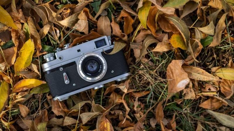 """Bei dem Spiel """"Waldkamera"""" gibt es einen Fotografen und eine Kamera"""