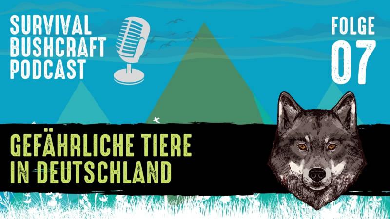 Podcast Folge 7: Die gefährlichsten Tiere in Deutschland