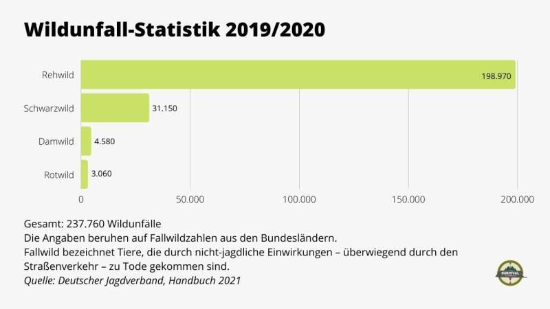 Mehr als 237.760 Wildunfälle gab es in Deutschland 2020