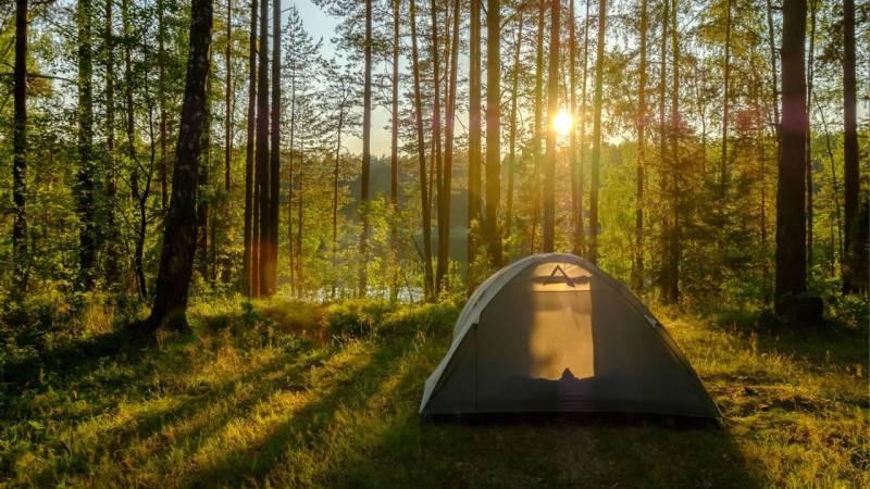 Zelten im Wald ist meistens verboten