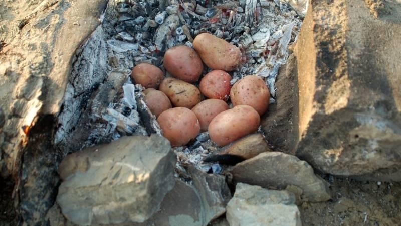 Kartoffeln beim Zelten sind nahrhaft und lecker