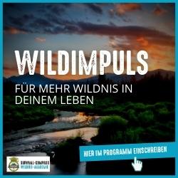 Wildimpuls - Dein Online-Programm für mehr Wildnis in deinem Leben