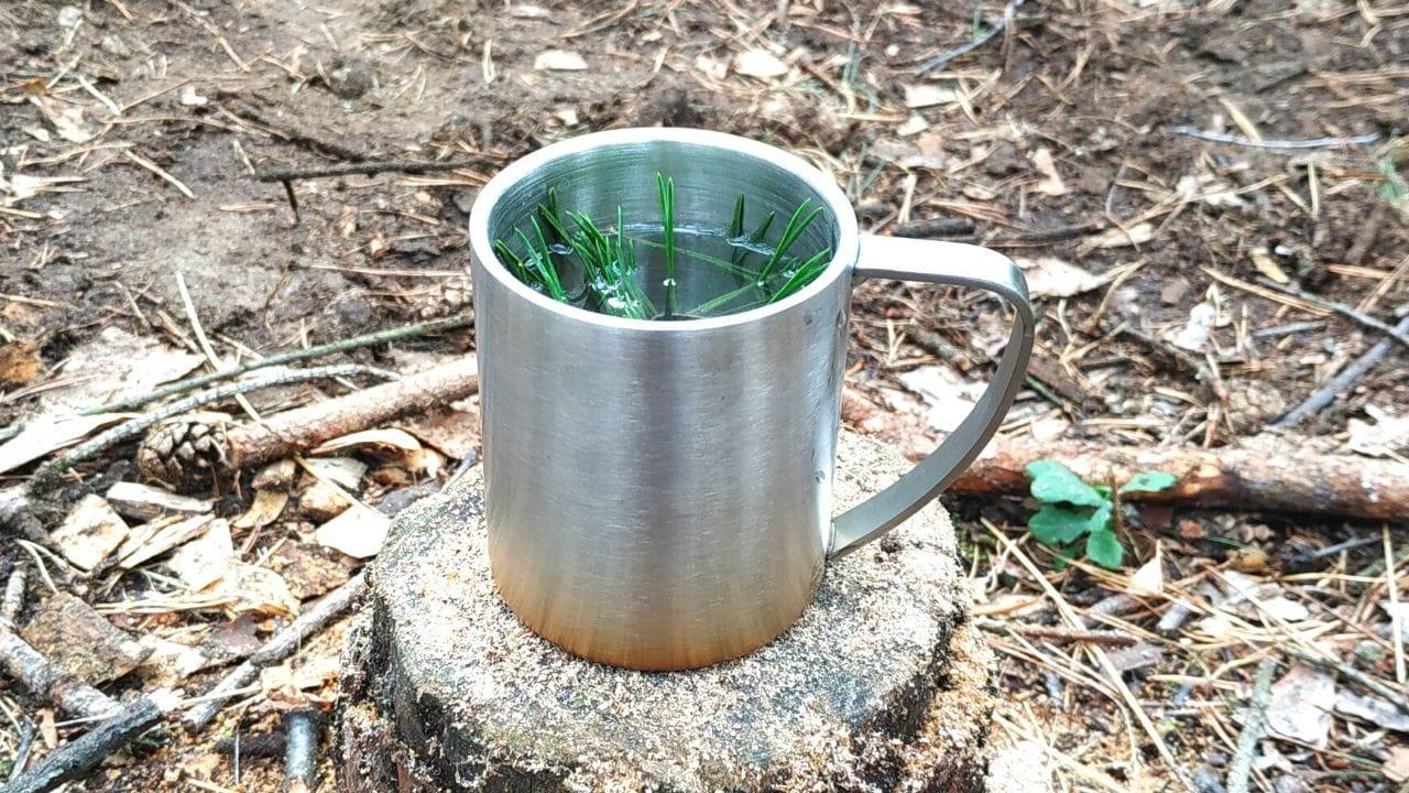 Nadelbaum-Tee